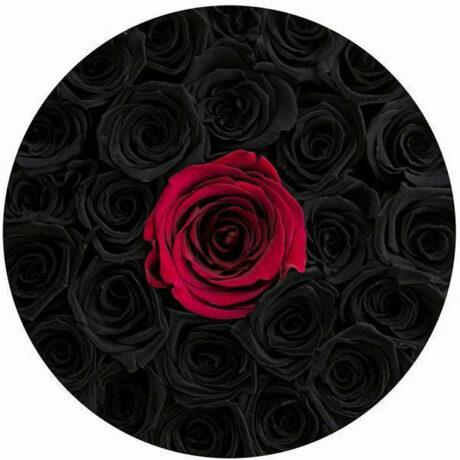 1 красная и черные розы в шляпной коробке (сверху)