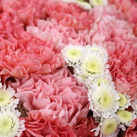 Букет из розовых гвоздик и кустовых хризантем (вид вблизи)