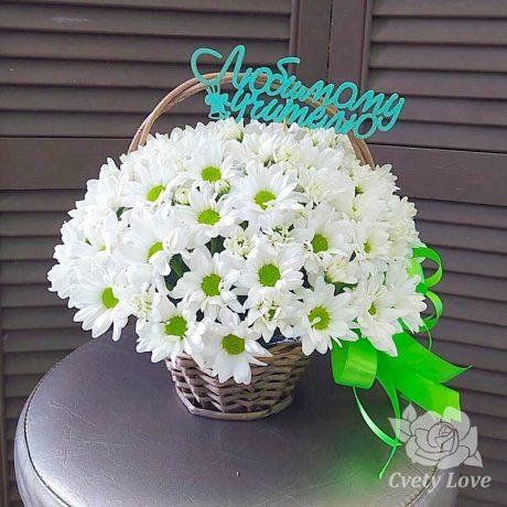 Белые хризантемы в корзине для учителя